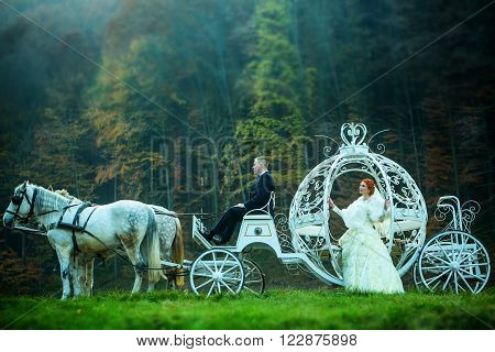 Wedding Couple In Carriage