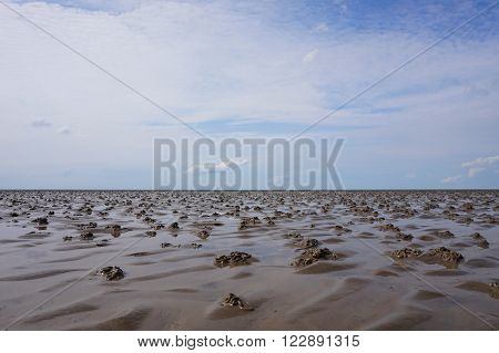 Panorama of beautiful Mudflat with blue sky