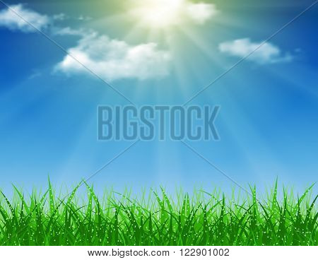 Beautiful spring background of blue sky with grass and bokeh lights. vector background summer design  green garden nature illustration. morning sunlight grass early dew. eco background