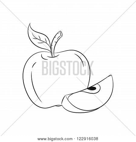 Apple: Vector hand drawn sketches vector illustration on white background - stock vector