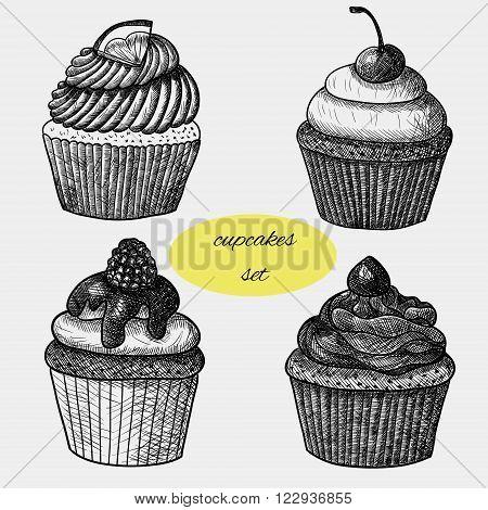 Cupcakes set. Lemon cupcake, cherry cupcake, raspberry cupcake and chocolate cupcake. Sketch. Hand-drawn black and white illustration