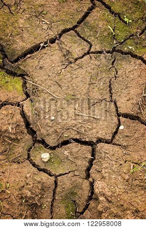 Close up of very dry soil in summer