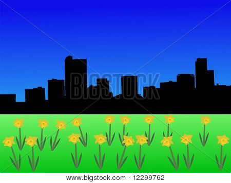 Denver skyline in spring with daffodils JPEG