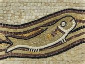 Illustration of fish swimming in the waves. National designs Jordan mosaic. Jordanian souvenir shop. poster