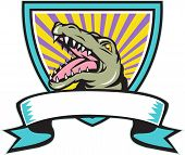 Illustration of an angry gator alligator crocodile head snout snapping set inside crest shield with ribbon scroll in front done in retro style on isolated background. poster
