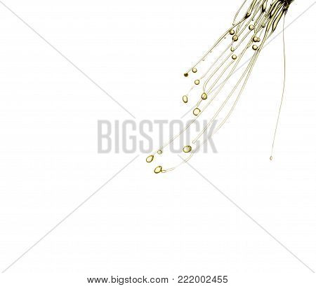 olive oil splashing isolated on white background.