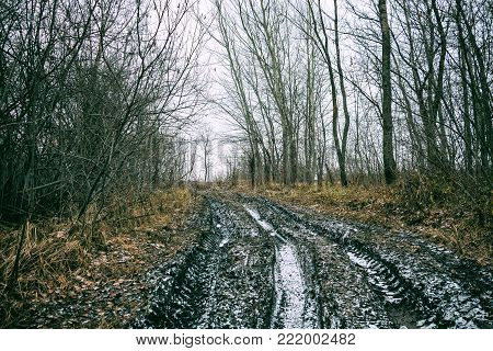 An impassable road, off-road track in autumn forest. Late autumn, early winter