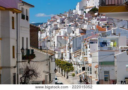 Olvera is a white village (pueblo blanco) in Sierra de Grazalema, Cadiz province, Andalucia, Spain - lemon plant at 408