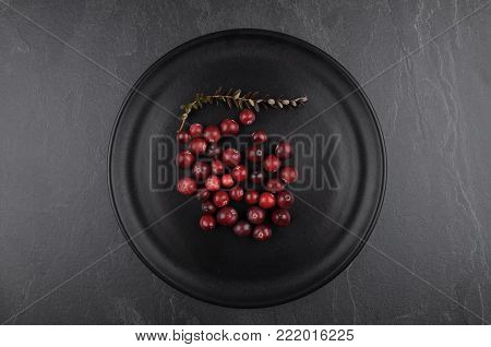 Colorful and crisp image of cranberries with plate on shale