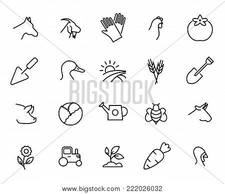 Simple collection of ecotourism related line icons. Thin line vector set of signs for infographic, logo, app development and website design. Premium symbols isolated on a white background.