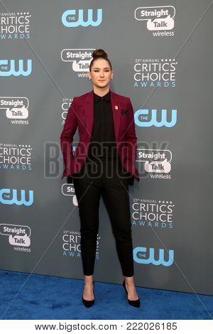 LOS ANGELES - JAN 11:  Elizabeth Hannah at the 23rd Annual Critics' Choice Awards at Barker Hanger on January 11, 2018 in Santa Monica, CA