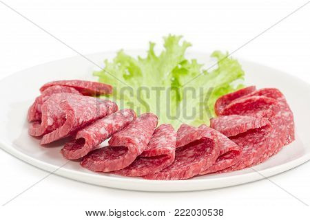 Fragment of the white dish with sliced salami and lettuce leaf closeup at shallow depth of field on a white background