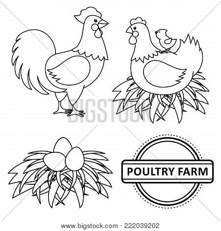 Vector chicken set. Monochrome contour rooster, cock, hen chicken, eggs in hay nest, yellow small chick, poultry farm logo. Isolated illustration, white background. Coloring book for children design
