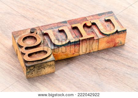 guru word abstract- text in vintage  letterpress wood type printing blocks stained by color inks