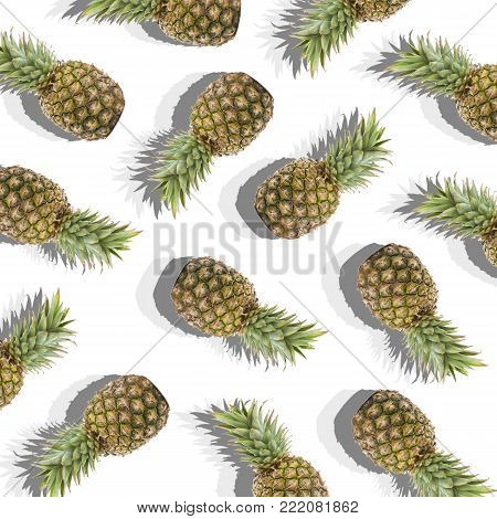 illustration in the form of white background with image of ripe pineapples