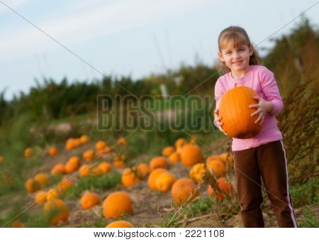 This Pumpkin'S Mine