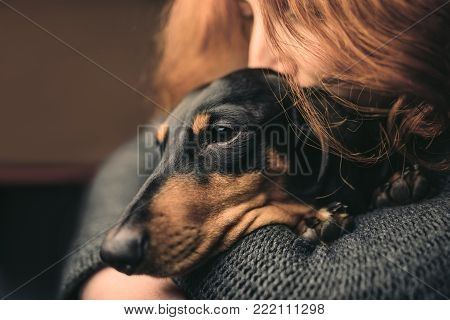 Portrait of a red-haired woman who hugs a sleepy black dog, duchshund. Woman out of focus.
