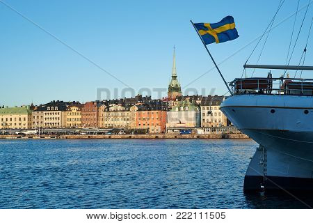 A Seagull In Front Of An Old Part Of Stockholm, Sweden.