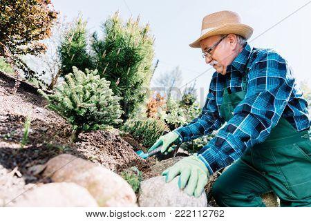 Senior man planting plants in a garden. Gardening hobby. Leisure activities.
