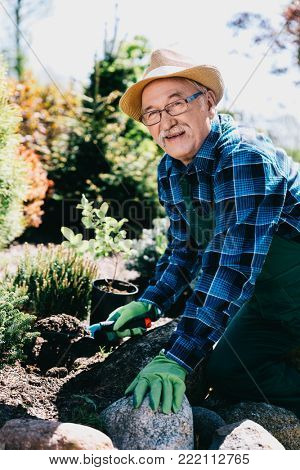 Old man planting flowers in his garden. Gardening hobby.