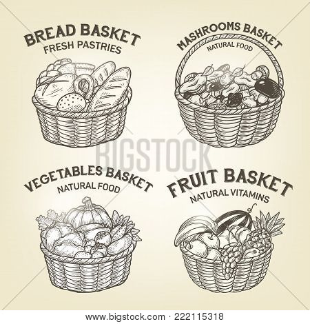 Set of baskets with diferent kinds of food. Vector sketch, meal colllection of bread, fruits, vegetables and mushrooms. Tray logos are good for a logo design or recipe book design.