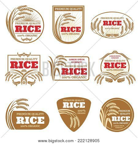 Paddy rice vector labels. Organic natural product emblems. Rice label and emblem, organic farm product illustration
