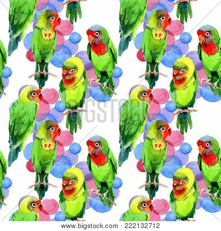 Sky birds small parrots pattern in a wildlife by watercolor style. Wild freedom, bird with a flying wings. Aquarelle bird for background, texture, pattern, frame, border or tattoo.