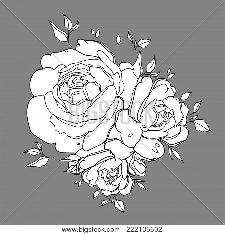 Rose flower isolated outline hand drawn. Stock line vector illustration