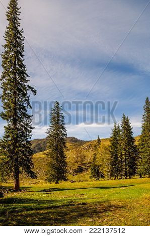 Beauty view in mountains of Altai. Mountain range in the north-west of the Altai Mountains, in the Altai Territory of Russia.