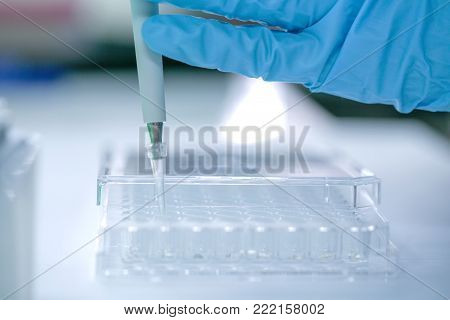 Scientist pipette dropping a sample into a test microtiter plate.