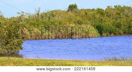 Beautiful scenery at Everglades National Park of Florida USA