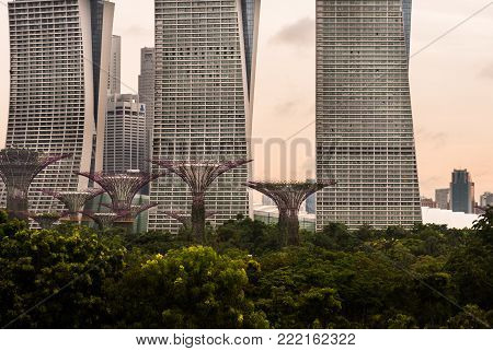 Gardens By The Bay - May 24, 2017: Gardens By The Bay View From Marina Barrage On Sunset Time At Mar