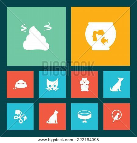 Collection Of Cat, Food, Scissor And Other Elements.  Set Of 10 Animals Icons Set.