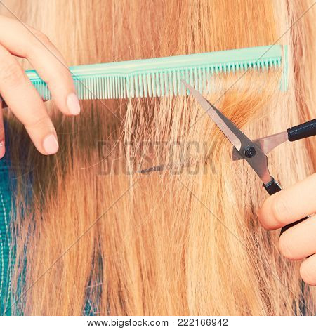 Cutting down and shearing concept. Blonde woman cuts and combing her straight smoothy fair hair. Professionalist making new coiffure hairdo.