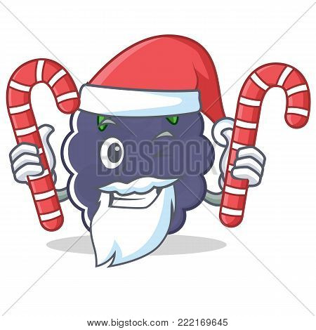 Santa with candy blackberry mascot cartoon style vector illustration