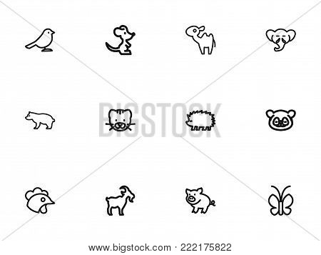 Set of 12 editable zoology icons line style. Includes symbols such as butterfly, bear, dromedary and more. Can be used for web, mobile, UI and infographic design.