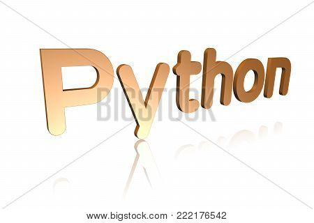 Programming Term - Python - Object-oriented Programming Language -  3d Image