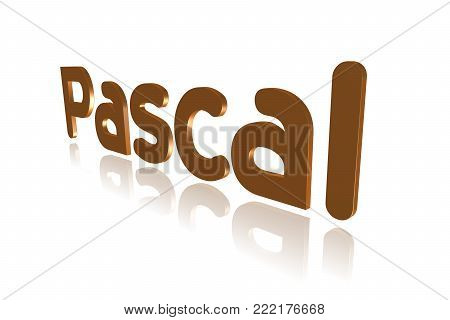 Programming Term - Pascal - High-level  Programming Language -  3d Image