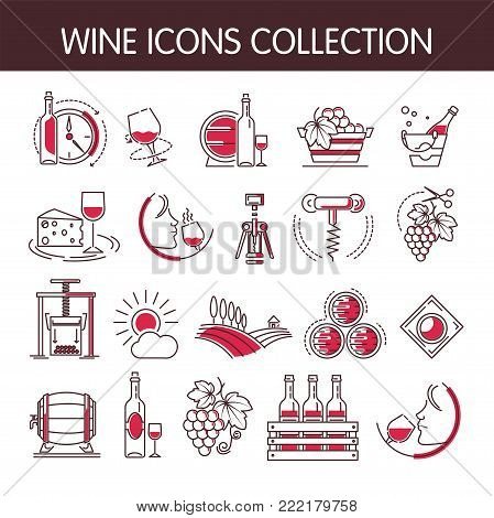 Wine icons vector collection set for winemaking or wine productions industry. Isolated winery wine glass or bottle and corkscrew opener, sommelier drink and vine vintage with grape in winepress