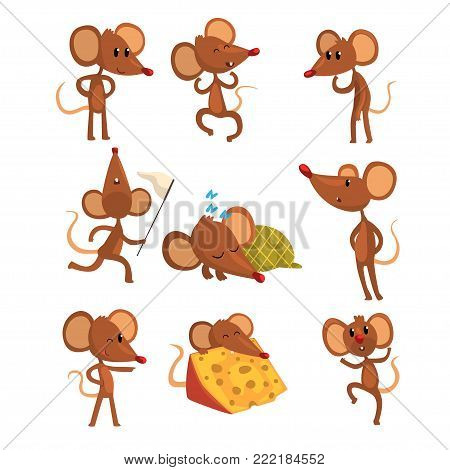 Set of cartoon mouse character in different actions. Sleeping, running with sweep-net, eating cheese, winking eye, jumping. Little brown rodent in flat style. Vector illustration isolated on white.