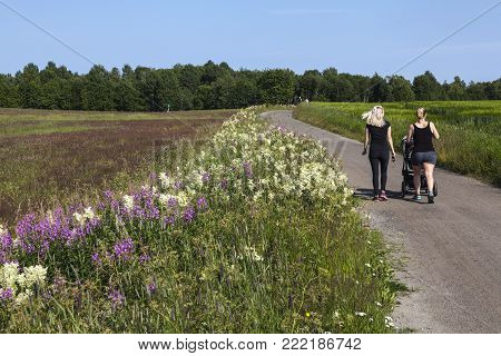 UMEA, SWEDEN ON JULY 26. View of farmland, a gravel road and flowers on July 26, 2017 in Umea, Sweden. Unidentified ladies on the pathway. Summer. Editorial use