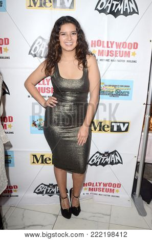 LOS ANGELES - JAN 10:  Amber Romero at the Batman '66 Retrospective and Batman Exhibit Opening Night at the Hollywood Museum on January 10, 2018 in Los Angeles, CA