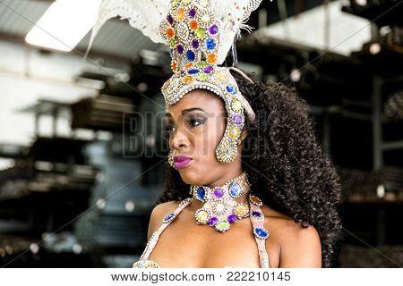Wonderful Brazilian woman wearing carnival costume