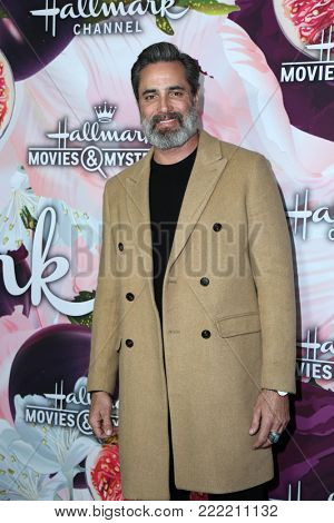LOS ANGELES - JAN 13:  Victor Webster at the Hallmark Channel and Hallmark Movies and Mysteries Winter 2018 TCA Event at the Tournament House on January 13, 2018 in Pasadena, CA