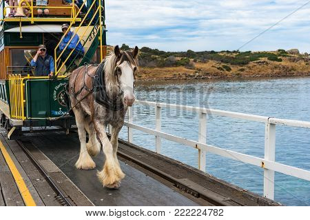 Victor Harbor, Australia - November 11, 2017: Horse Drawn Tram on the way to Granite island