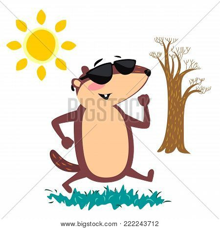 Happy Groundhog Day design with cute marmot in sunglasses walking park under the sun, prediction of weather, animal climbed out of ground burrows after wintering,  vector .