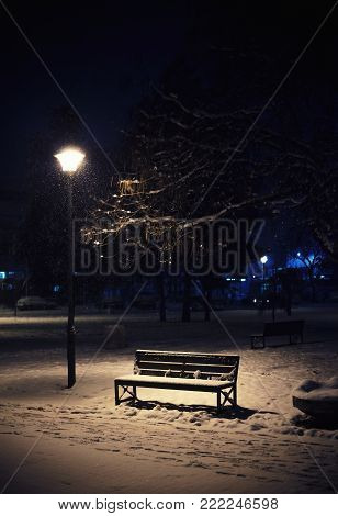 A night scene from a city park, a view of the bench, a lampion, and snow-covered branches.