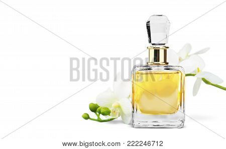 Flowers bottle perfume studio shot white object nobody