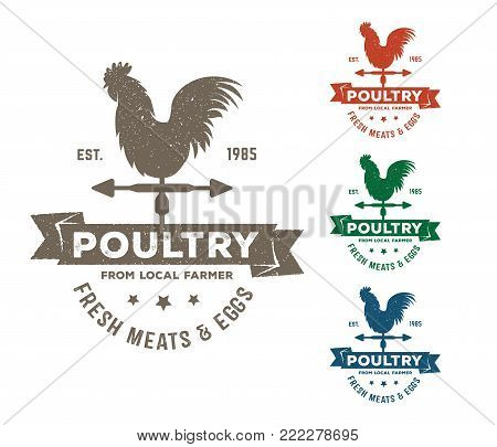 vintage retro vector label badge design set of farm, poultry, chicken, hen, rooster, livestock, cock weather. red and blue color poster