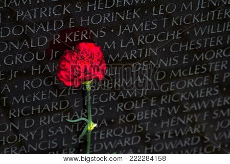 WASHINGTON DC - May 10, 2016: Vietnam Veterans Memorial, in Washington DC, Vietnam Memorial Wall, designed by Maya Lin, dedicated in 1982 with flower